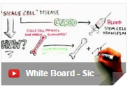 whiteboard.sickle.cell