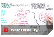whiteboard.type1diabetes